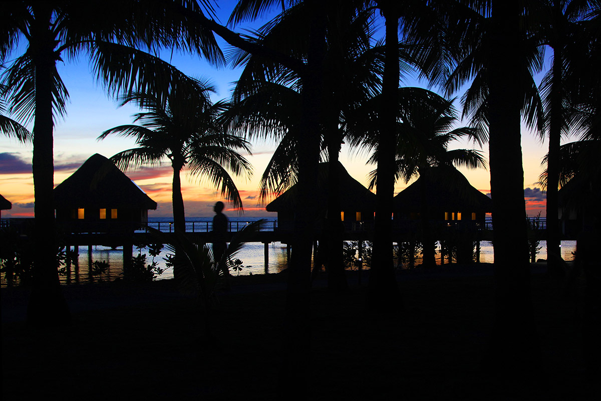 bora_bora/bora_hilton_sunset_trees