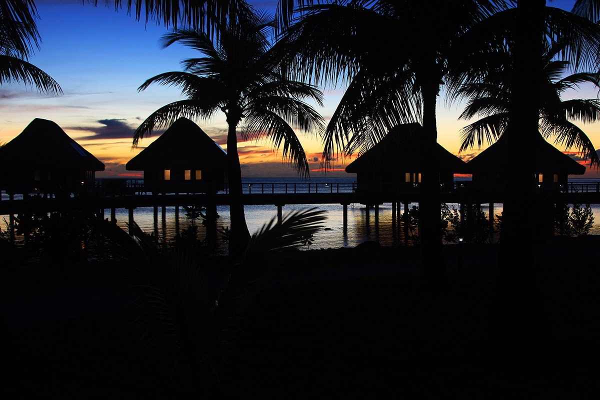 bora_bora/bora_hilton_sunset_trees_2