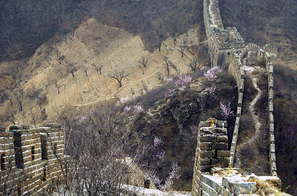 china/2001/wall_trees_path