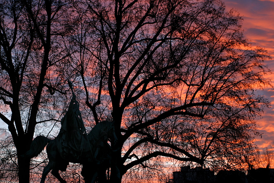 france/paris_sunset_branches