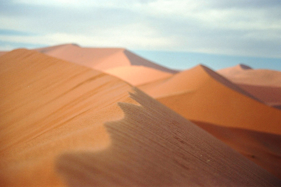 namibia/dune_45_close_up