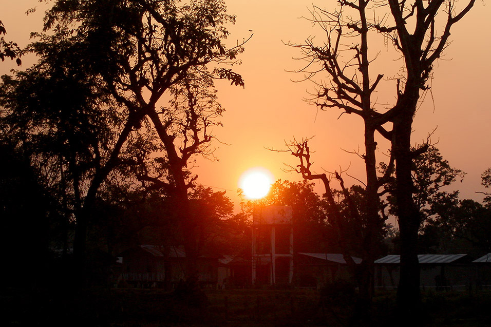 nepal/chitwas_sunset_ground