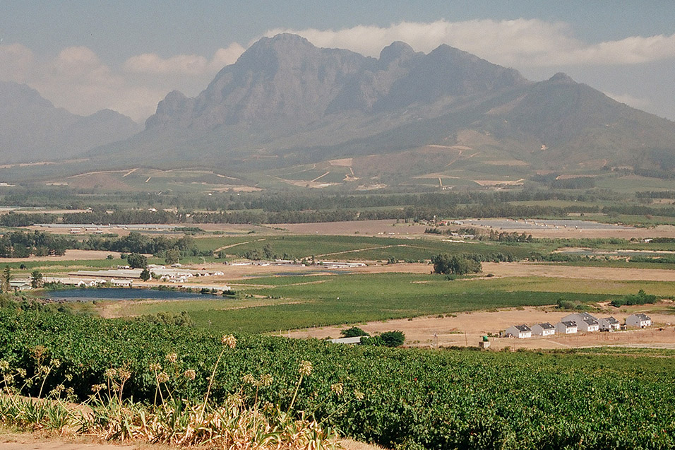 south_africa/stellenbosch_view