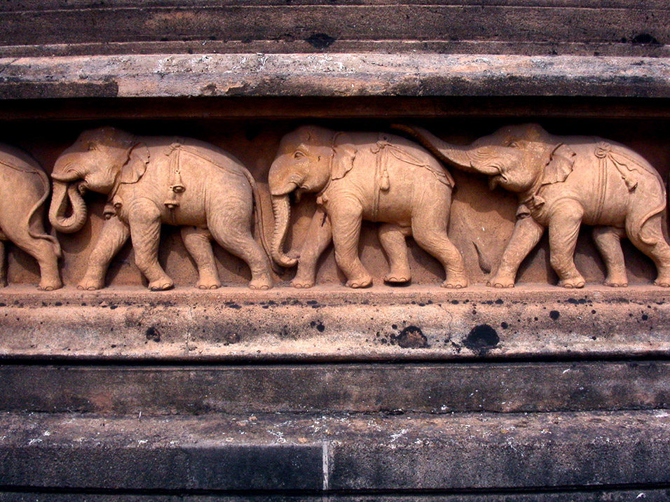 sri_lanka/temple_elephants