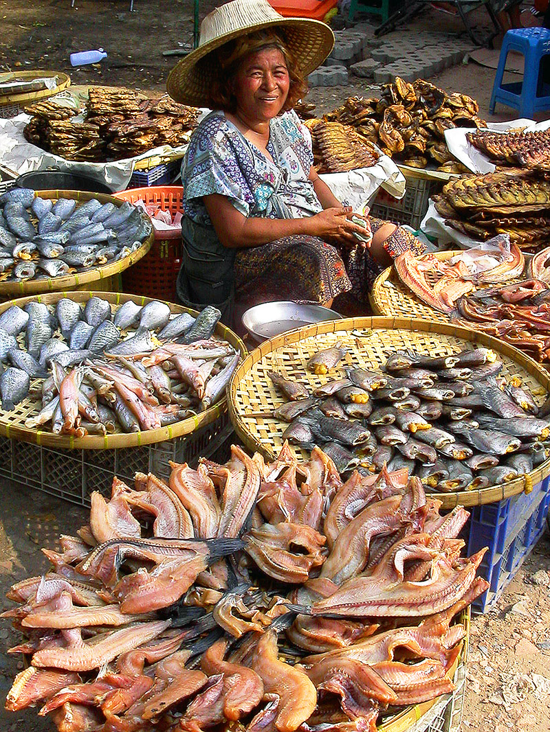 thailand/2004/ayutthaya_woman_selling_dried_fish