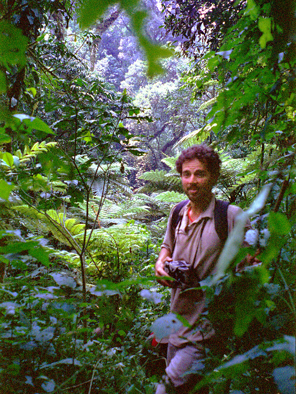 uganda/bwindi_gorilla_brian_jungle